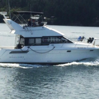 1992 Motor Yacht, 38 foot Member since 2013
