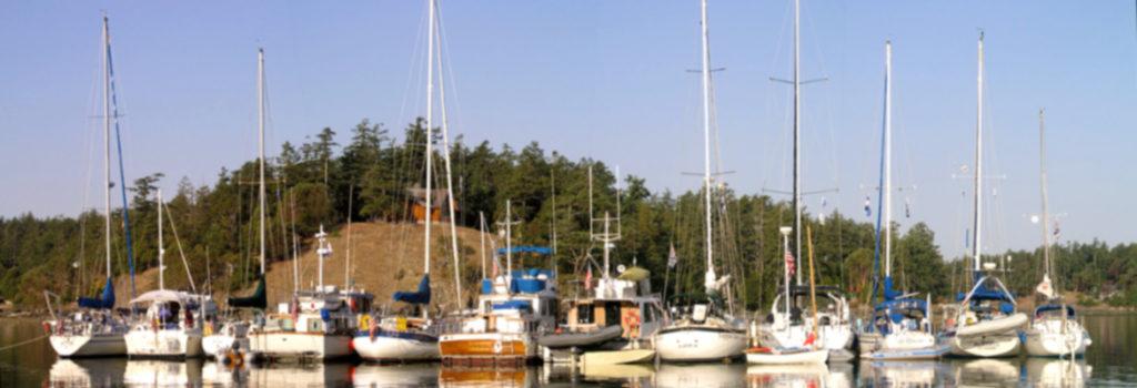 Garrison Bay raft up
